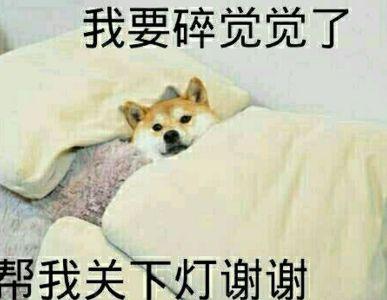 每天最重要的事情是睡觉。  因为当你第二天起床的时候