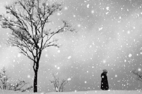 2017年,雪景是一本美丽而感伤的书。